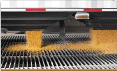 Corn being processed
